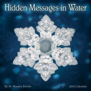 Messages in Water Calendar Cover