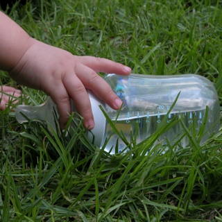 Baby Bottle in Grass