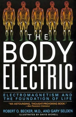 Body Electric Bookcover