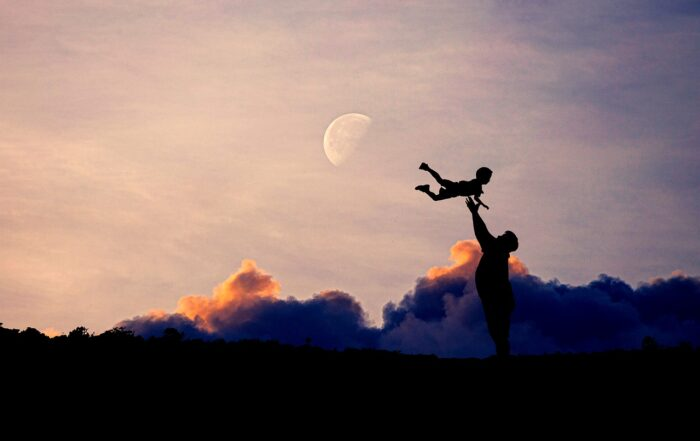 Dad Baby Silhouette Family Father  - AlemCoksa / Pixabay